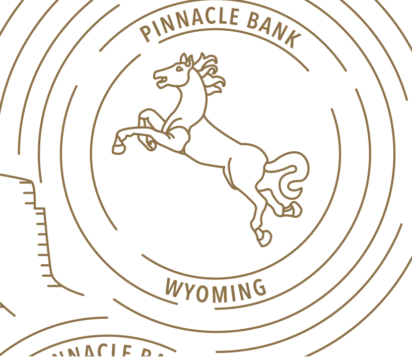PinnBank_Illustration_Detail
